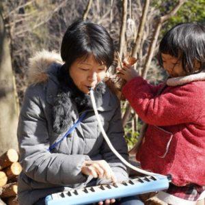 森と音楽(音楽)