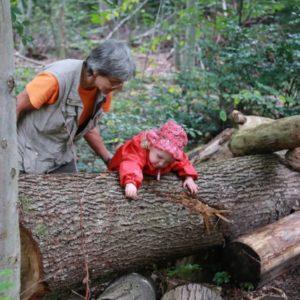 2019年10月 ドイツ視察報告8  「森の乳母」