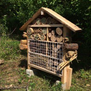 虫の家づくり(観察&作る)