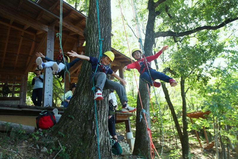 ロープを使って自分の力だけで木に登る子どもたち