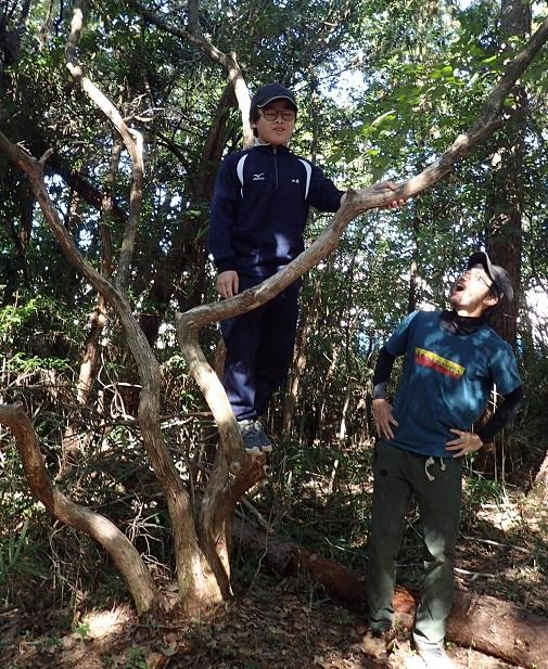 プレーパークで木登りする中学生