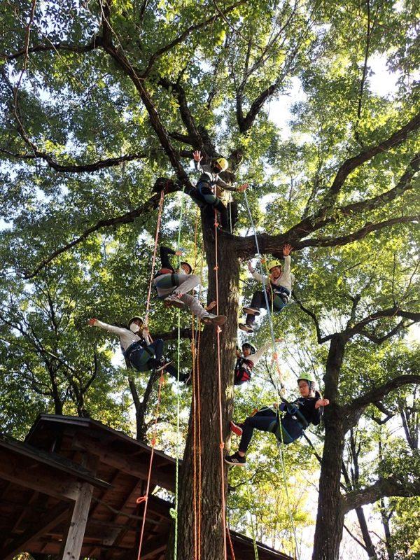 女子チーム、樹上でポーズ
