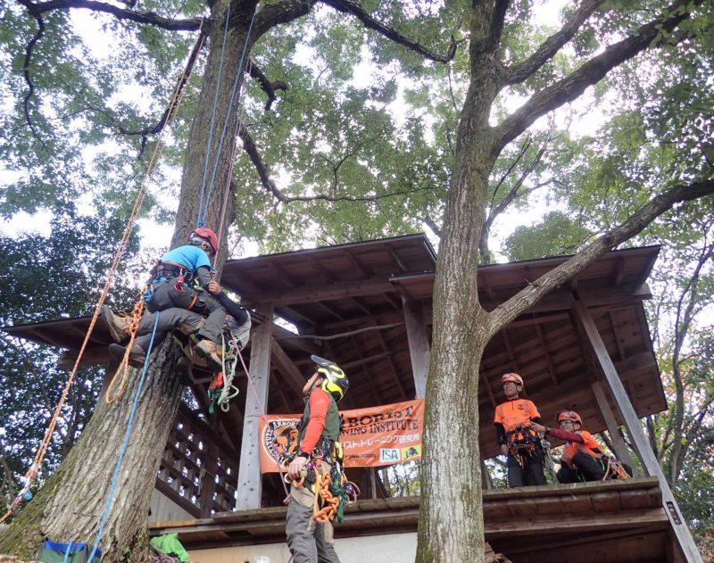 要救助者側のロープに乗り移って下降するシステムの実践