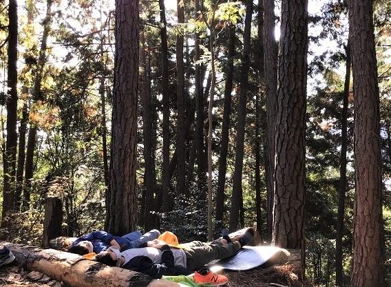⑤「森でおひるね」する先生と生徒