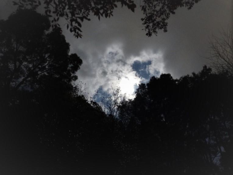 ナイトハイク(月明かり)