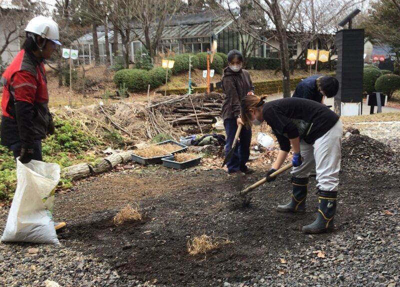 学生による植栽風景