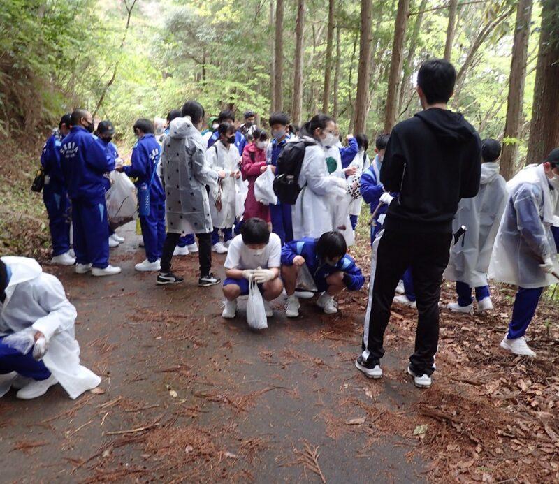林道でスギぼっくりやヒノキぼっくりを拾う中学生