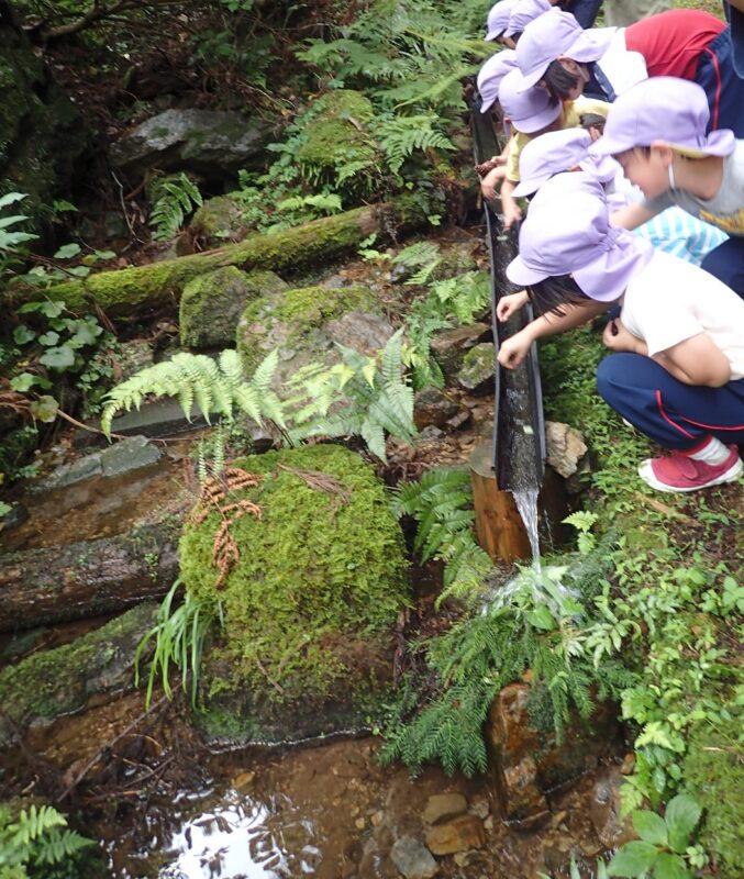 山の清水で葉っぱ流し