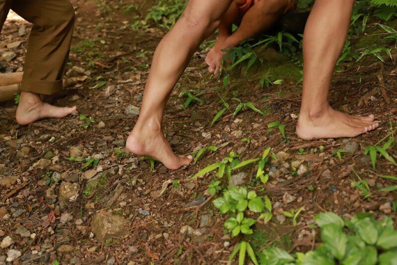 裸足で森を歩く1