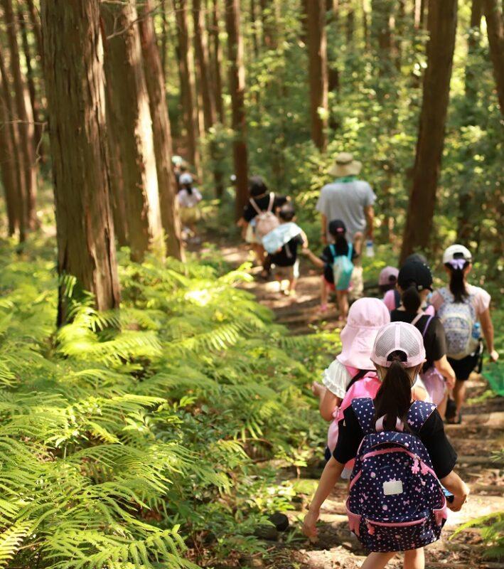演習林の山道を下る子どもたち