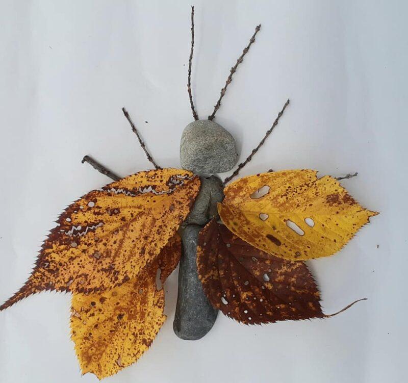 落ち葉と小枝、石の昆虫