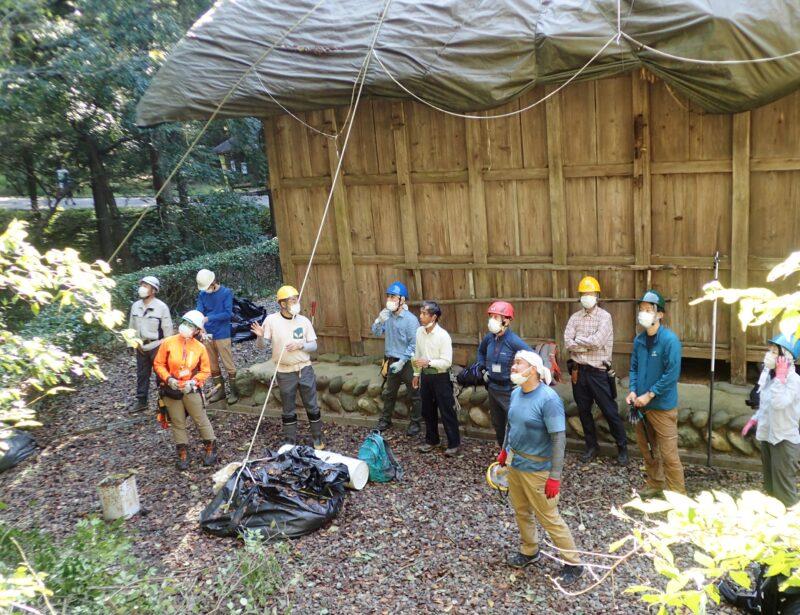 整備した林地を参加者で確認